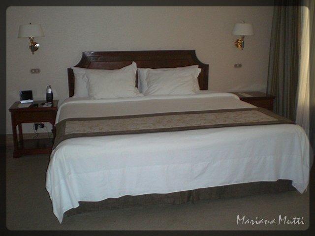 Si los hostels baratos tuviesen estas camas...
