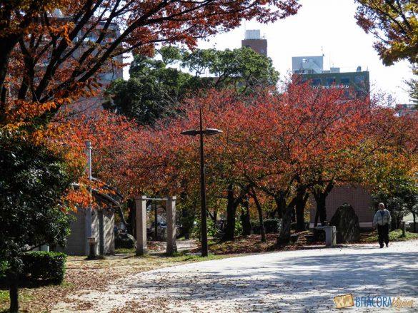 otoño en fukuoka japon