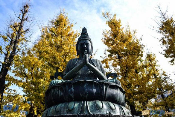 otoño en tokio japon